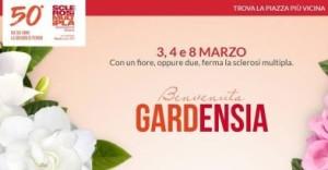 aism-benvenuta-gardensia